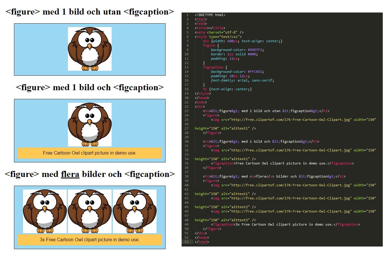 Praktiskt exempel och demo av figure och figcaption i HTML.
